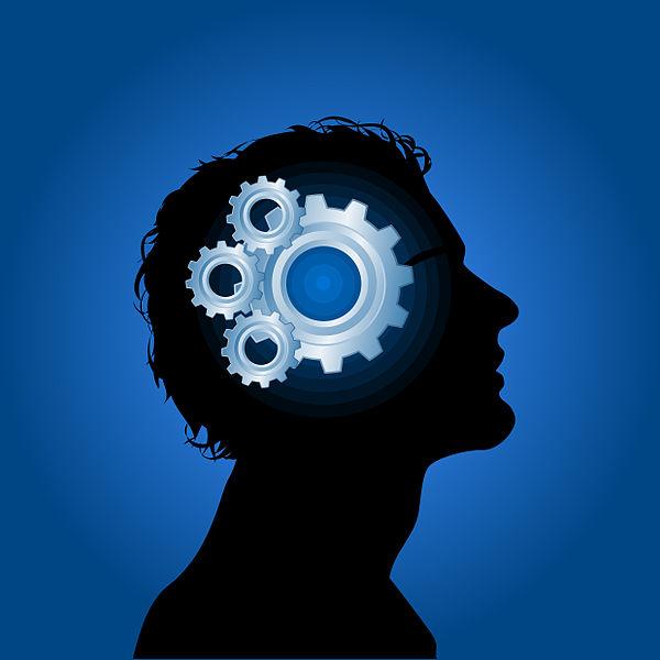 """Affidarsi ad un coach, counselor, consulente, psicologo/psicoterapeuta o mentor? Scegliere si può, con la """"metafora della bicicletta"""" di Valentina Licciano"""