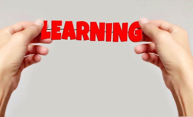 Come diventare consulente del lavoro: la formazione continua