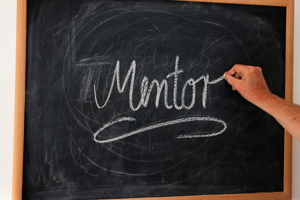mentoring significato