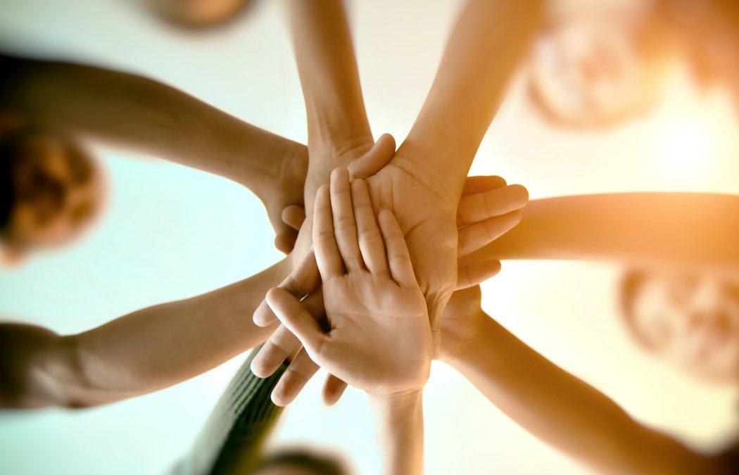 Due verità, una bugia: gli esercizi di team building proposti da GEMA